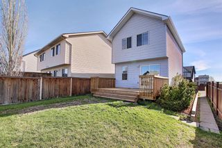 Photo 31: 149 Elgin Place SE in Calgary: McKenzie Towne Detached for sale : MLS®# A1106514