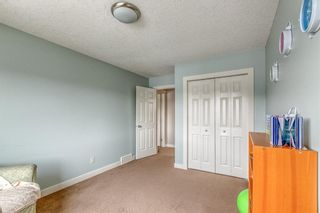 Photo 31: 212 COPPERPOND Circle SE in Calgary: Copperfield Detached for sale : MLS®# C4305503