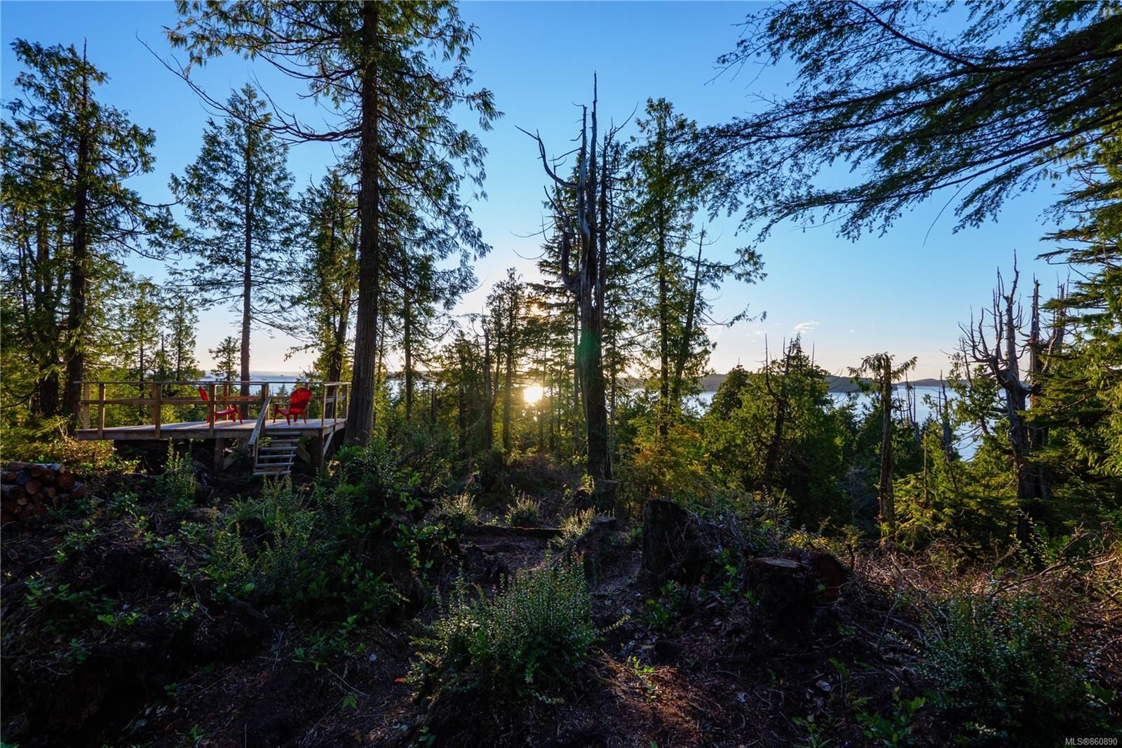 Photo 5: Photos: LOT 1 Tonquin Park Rd in : PA Tofino Land for sale (Port Alberni)  : MLS®# 860890