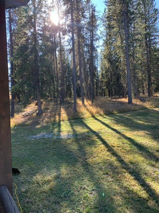 Photo 31: TWP ROAD 283 WEST OF DARTIQUE HALL: Bottrel Agriculture for sale : MLS®# A1152078