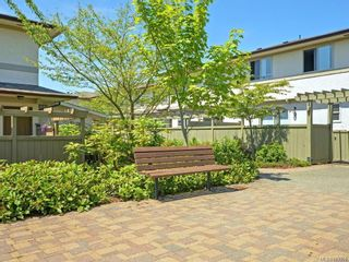 Photo 31: 69 4061 Larchwood Dr in : SE Lambrick Park Row/Townhouse for sale (Saanich East)  : MLS®# 877958