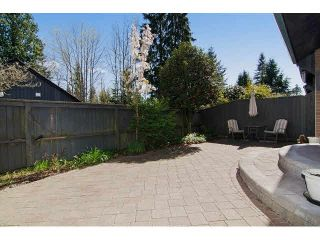 """Photo 20: 417 4001 MT SEYMOUR Parkway in North Vancouver: Roche Point Townhouse for sale in """"THE MAPLES"""" : MLS®# V1115276"""