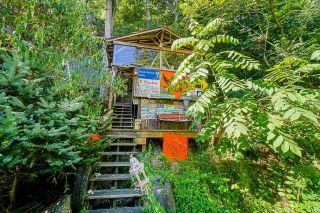 Photo 32: 27029 LOUGHEED Highway in Maple Ridge: Whonnock House for sale : MLS®# R2608657
