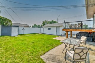 Photo 33: 703 Alderwood Place SE in Calgary: Acadia Detached for sale : MLS®# A1131581
