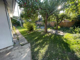 Photo 28: 509 55 Avenue SW in Calgary: Windsor Park Detached for sale : MLS®# A1148351