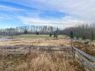 Photo 9: 49101 Range Road 233: Rural Leduc County Rural Land/Vacant Lot for sale : MLS®# E4219459