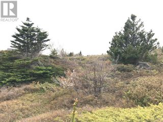 Photo 6: 0 Main Street in Embree: Vacant Land for sale : MLS®# 1229550