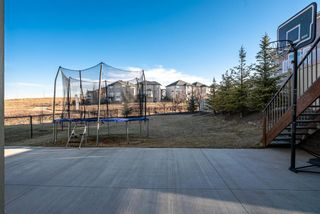 Photo 40: 21 Sherwood Way NW in Calgary: Sherwood Detached for sale : MLS®# A1100919