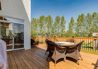Photo 44: 176 Hawkmere Way: Chestermere Detached for sale : MLS®# A1129210