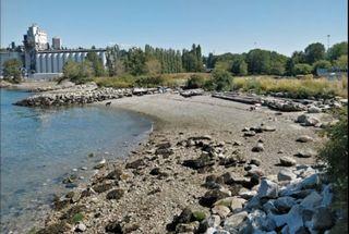 "Photo 28: 217 2366 WALL Street in Vancouver: Hastings Condo for sale in ""Landmark Mariner"" (Vancouver East)  : MLS®# R2604836"