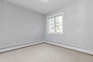 Photo 23: 401C 4455 Greenview Drive NE in Calgary: Greenview Apartment for sale : MLS®# A1052674