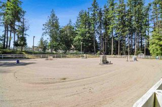 Photo 20: 21113 16 Avenue in Langley: Campbell Valley Agri-Business for sale : MLS®# C8033266