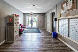 Photo 17: 1103 16969 24 Street SW in Calgary: Bridlewood Apartment for sale : MLS®# A1116268