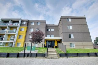 Main Photo: 303 4455A Greenview Drive NE in Calgary: Greenview Apartment for sale : MLS®# A1108022