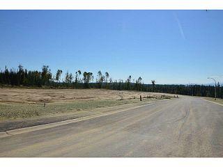 """Photo 5: LOT 13 BELL Place in Mackenzie: Mackenzie -Town Land for sale in """"BELL PLACE"""" (Mackenzie (Zone 69))  : MLS®# N227306"""