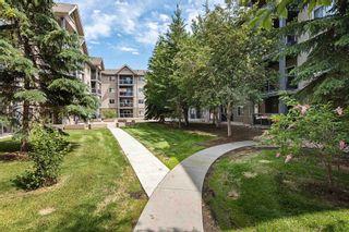 Photo 44: 215 279 SUDER GREENS Drive in Edmonton: Zone 58 Condo for sale : MLS®# E4261429