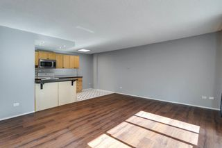 Photo 19: 307 903 19 Avenue SW in Calgary: Lower Mount Royal Apartment for sale : MLS®# A1152500