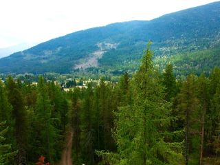 Photo 25: 1969 SANDY ROAD in Castlegar: Vacant Land for sale : MLS®# 2461033