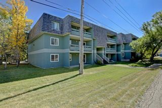 Photo 29: 9107 315 Southampton Drive SW in Calgary: Southwood Apartment for sale : MLS®# A1105768