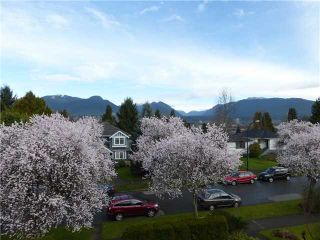 Photo 19: 2616 TRINITY ST in Vancouver: Hastings East House for sale (Vancouver East)  : MLS®# V1108073