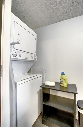 Photo 21: 504 1215 Cameron Avenue SW in Calgary: Lower Mount Royal Apartment for sale : MLS®# A1062739