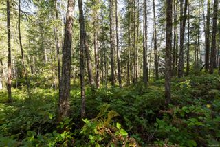 Photo 8: Lot 191 Brent Rd in : CV Comox Peninsula Land for sale (Comox Valley)  : MLS®# 855702