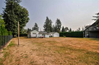 Photo 3: 4689 238 Street in Langley: Salmon River House for sale : MLS®# R2327028