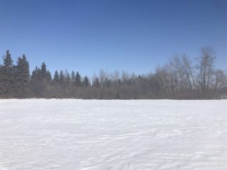 Photo 6: 253 TWP RD 610: Rural Westlock County Rural Land/Vacant Lot for sale : MLS®# E4191859
