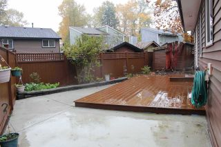 Photo 24: 8167 122 Street in Surrey: Queen Mary Park Surrey House for sale : MLS®# R2512755