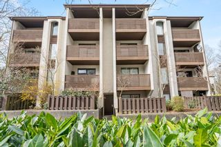 """Photo 19: 404 385 GINGER Drive in New Westminster: Fraserview NW Condo for sale in """"Fraser Mews"""" : MLS®# R2556053"""