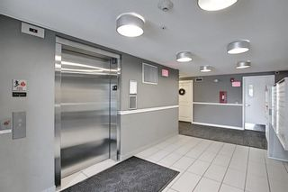 Photo 29: 1406 240 Skyview Ranch Road NE in Calgary: Skyview Ranch Apartment for sale : MLS®# A1139810