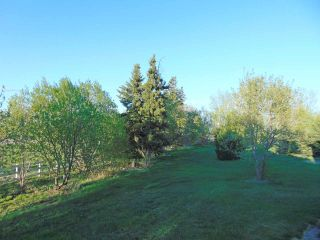 Photo 15: 61124 Rg Rd 253: Rural Westlock County House for sale : MLS®# E4186852