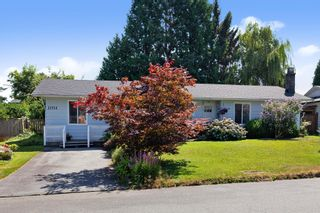 Photo 1: 22914 STOREY Avenue in Maple Ridge: East Central House for sale : MLS®# R2484029