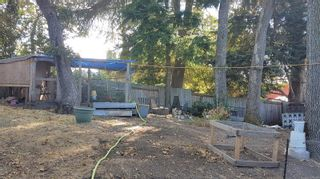 Photo 8: 3327 Richmond Rd in : SE Camosun House for sale (Saanich East)  : MLS®# 885686