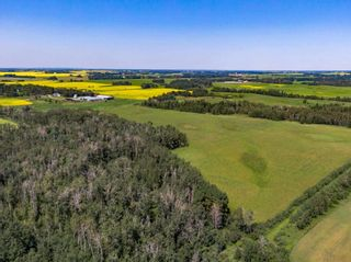 Photo 24: 461017A RR 262: Rural Wetaskiwin County House for sale : MLS®# E4255011