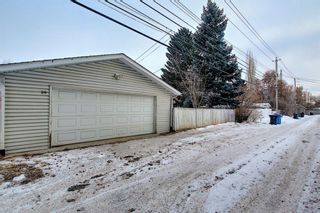 Photo 43: 8019 4A Street SW in Calgary: Kingsland Detached for sale : MLS®# A1063979