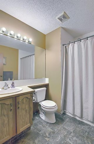 Photo 29: 18388 Chaparral Street SE in Calgary: Chaparral Detached for sale : MLS®# A1113295