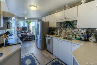 Photo 7: 309 490 Marsett Pl in VICTORIA: SW Royal Oak Condo for sale (Saanich West)  : MLS®# 822080