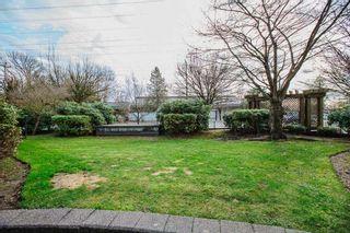 "Photo 27: 404 12020 207A Street in Maple Ridge: Northwest Maple Ridge Condo for sale in ""Westbrooke"" : MLS®# R2529905"
