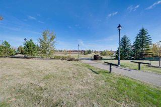 Photo 30: 421 304 AMBLESIDE Link in Edmonton: Zone 56 Condo for sale : MLS®# E4258054