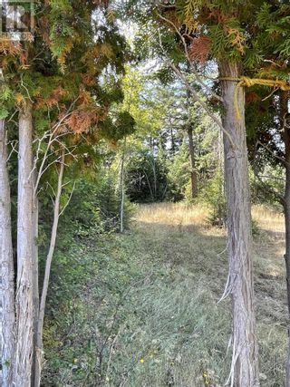 Photo 12: 1803 SOUTH LAKESIDE DRIVE in Williams Lake: Vacant Land for sale : MLS®# R2612495