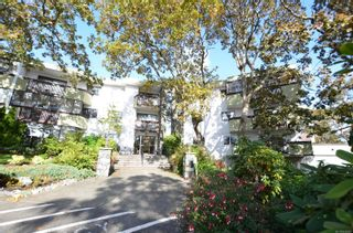 Photo 30: 313 3962 Cedar Hill Rd in : SE Mt Doug Condo for sale (Saanich East)  : MLS®# 858783