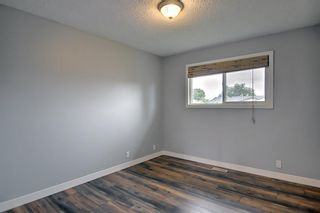 Photo 15: 155 Templevale Road NE in Calgary: Temple Detached for sale : MLS®# A1119165