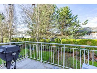 """Photo 30: 32 20890 57 Avenue in Langley: Langley City Townhouse for sale in """"Aspen Gables"""" : MLS®# R2541787"""