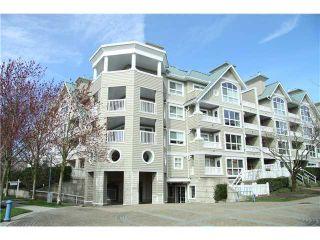 Photo 9: 113 5900 DOVER Crescent in Richmond: Riverdale RI Condo for sale : MLS®# V905708
