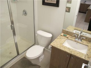 Photo 8: # 303 280 ROSS DR in New Westminster: Fraserview NW Condo for sale : MLS®# V1034557
