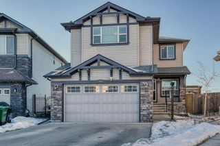 Main Photo: 27 SKYVIEW SPRINGS Cove NE in Calgary: Skyview Ranch Detached for sale : MLS®# A1053175