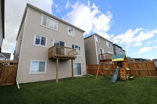 Photo 38: 121 WINDFORD Park SW: Airdrie Detached for sale : MLS®# C4288703