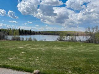 Photo 29: 52064 RGE RD 225: Rural Strathcona County House for sale : MLS®# E4244161