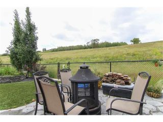 Photo 39: 100 CHAPARRAL VALLEY Terrace SE in Calgary: Chaparral House for sale : MLS®# C4086048